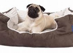 Win a Luxury Extra Large Dog Bed!