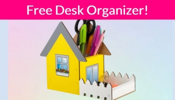 So cute! FREE Desk Organizer!