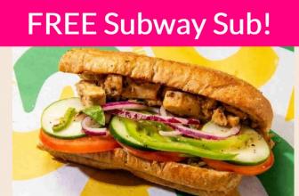 TOTALLY Free Subway Sub! RUN!