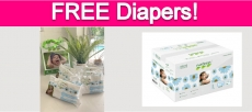 Free Sample by Mail of Nateen Baby Diapers!