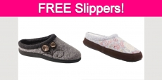 Possible Free Acorn Slippers!