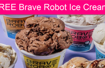 Totally FREE Brave Robot Ice Cream Pint!