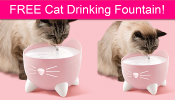 Possible FREE Cat Drinking Fountain!