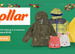 Enter To Win a $100 at Hollar!