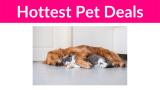 Hottest Pet Deals