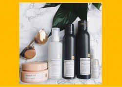 Free Kristin Ess Haircare Products with Viewpoints