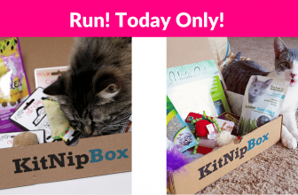 50% OFF 1st KitNipBox Subscription!