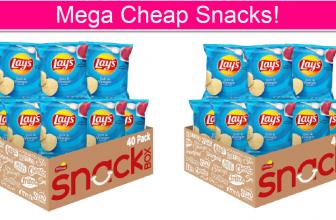 Lays Chips Salt & Vinegar PENNIES EA!