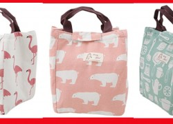 So Cute! These Insulation Lunch Bags ONLY $3.49 SHIPPED!