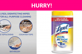Lysol Dual Action, Disinfecting Wipes