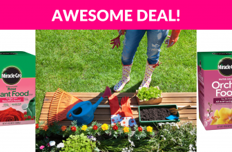 Miracle-Gro Plant Food Deals