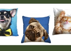 SO CUTE! Photo Real Pillows ONLY $3.00 Bucks ( Were $12 + )