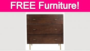 Possible Free Hayneedle Furniture!