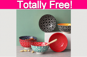 Free Gift from Dowan Dinnerware!