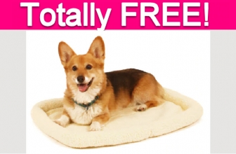 Possible FREE Pet Products!