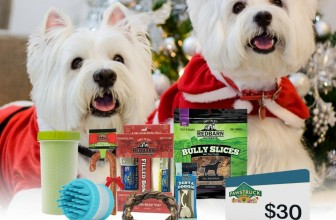 Win over $100 worth of your dog's favorite holiday gift!