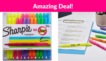 OMG! 24 Count Sharpie Highlighters!