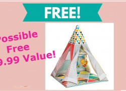Infant to Toddler Play Gym & Fun Teepee
