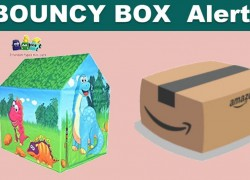 BOUNCY BOX! EVERY 2,000 Person WILL WIN!