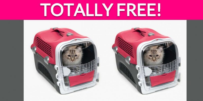 Totally Free Cat Carrier!