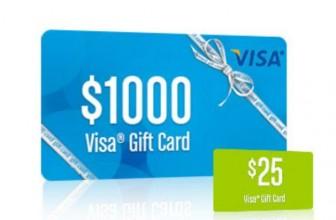 [11 WINNERS] Win a $1,000 Visa Gift Card! OMG!