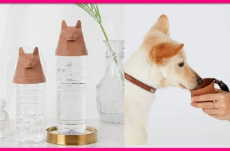 Possible FREE Portable Dog Water Bottle Attachment!